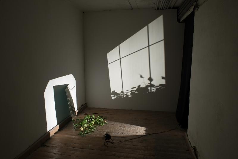 Ulrich Vogl. Fenster Tartu (Window Tartu). 2010_2013