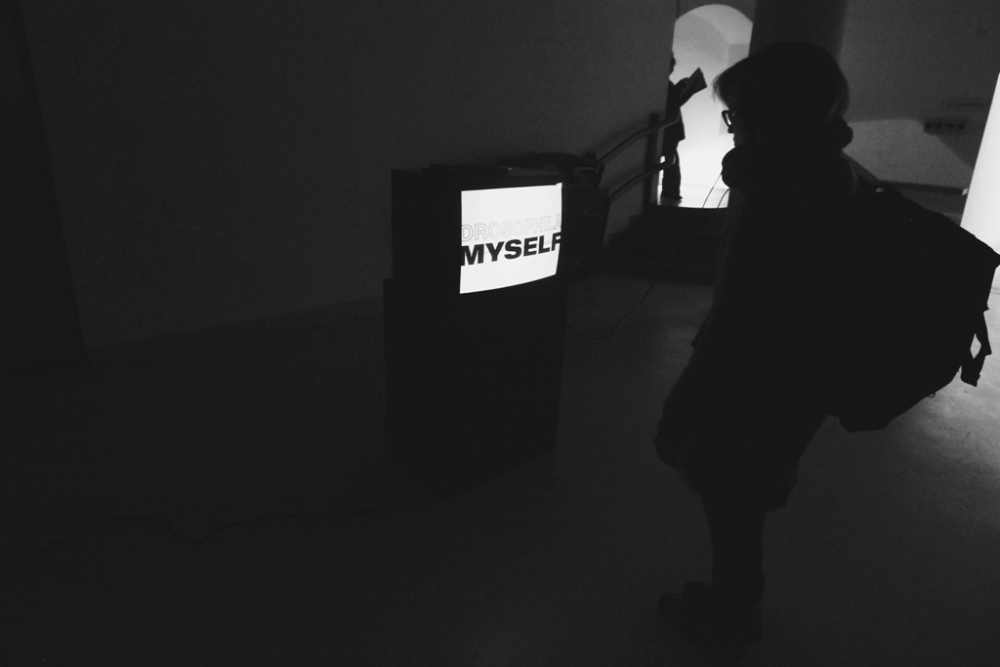 exhibition10a