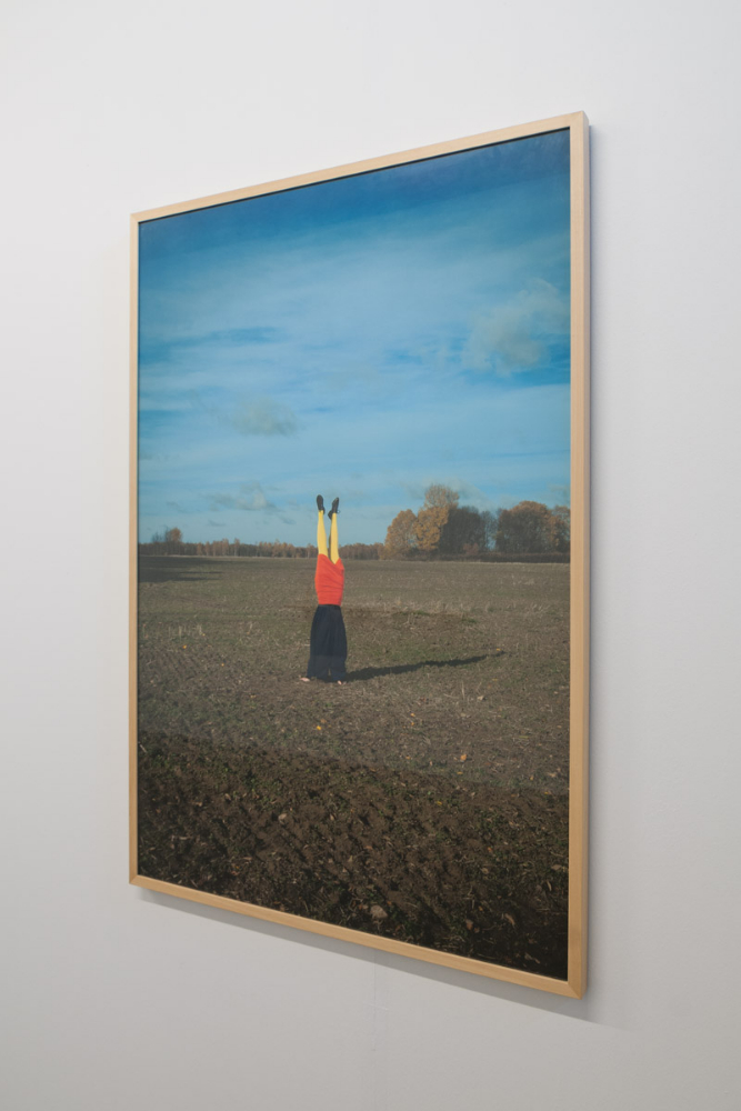 Kristiina Hansen, Changing, It Rests, 2013